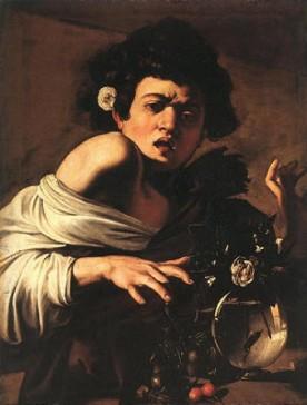 Jeune garçon mordu par un lézard- Caravage
