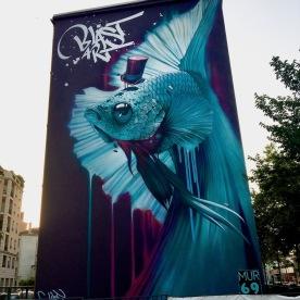 Street art Lyon Blast Art