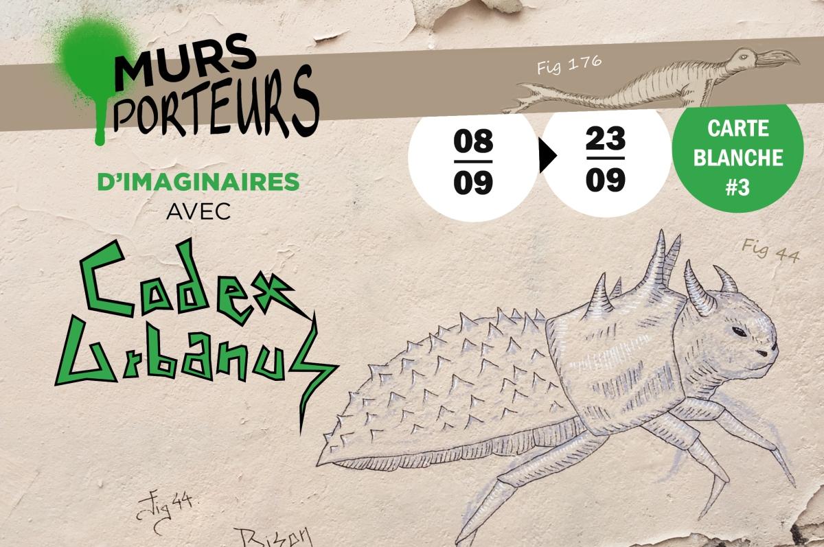 Codex Urbanus Ligne 13