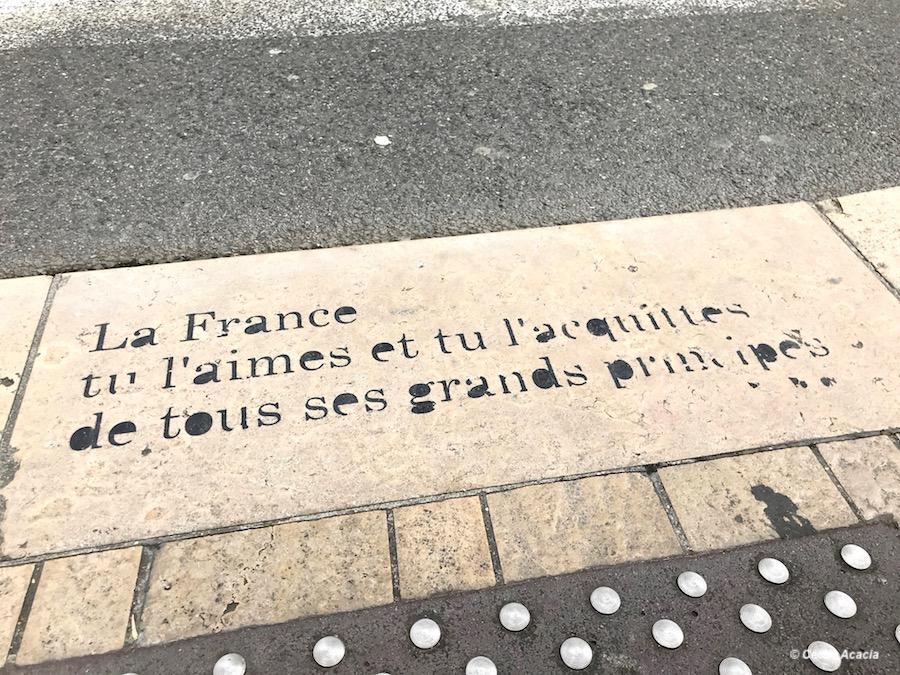 Street art Lyon Petite Poissonne