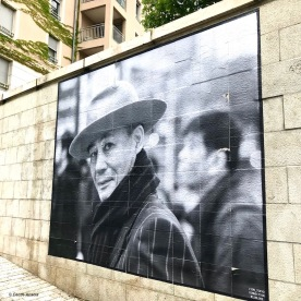 Street art Lyon Guillaume Ducreux