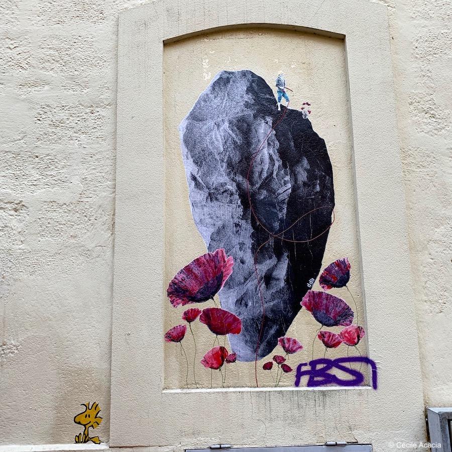 Street art Montpellier Débit de Beau