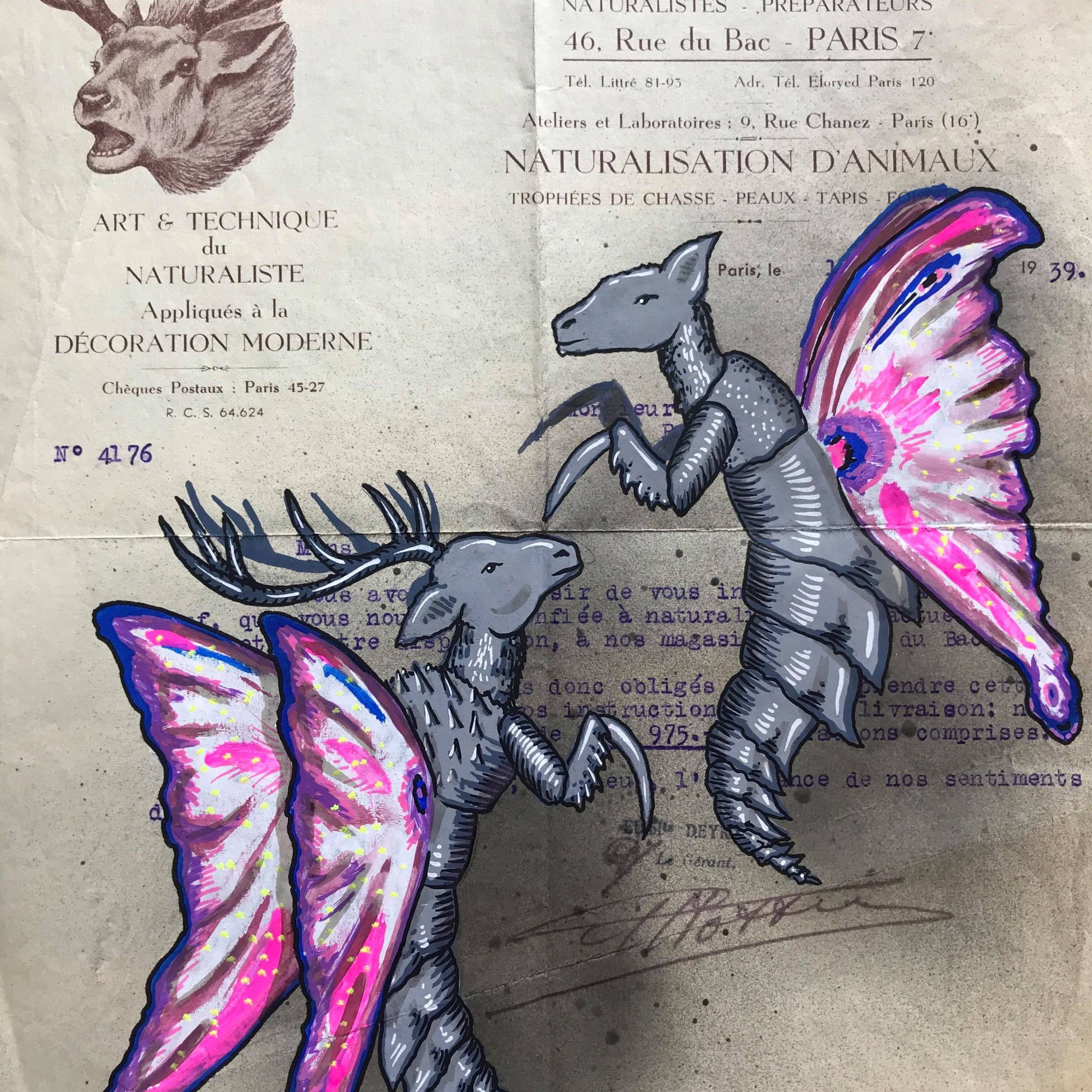 Bestiaire imaginaire Codex Urbanus Deyrolle