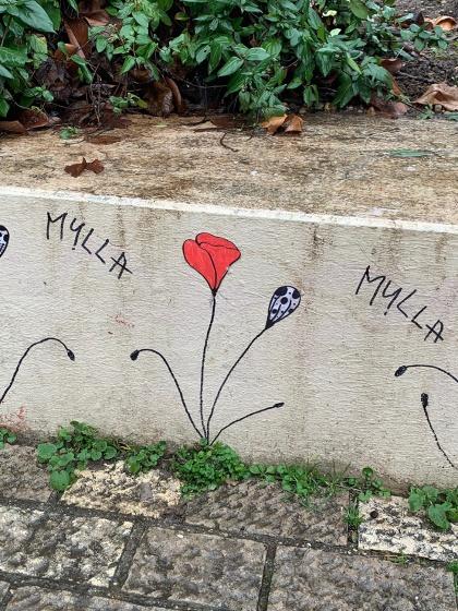 Mylla street art lyon
